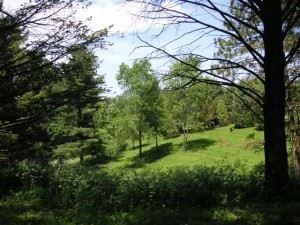 acreage for sale Illinois