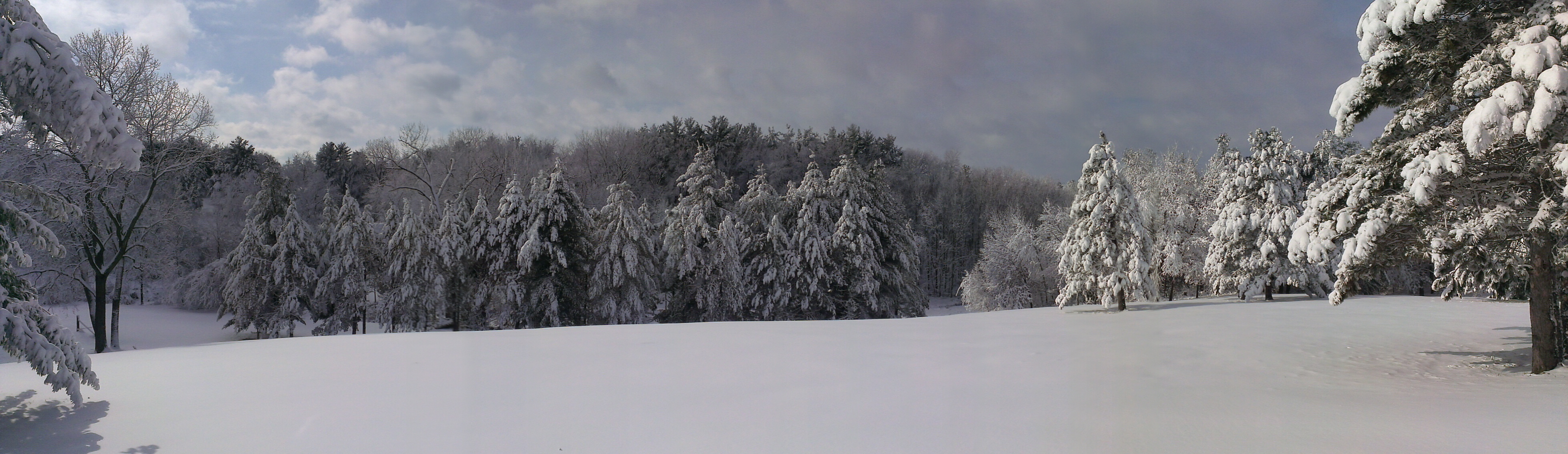 Westward Panorama-1