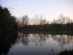 house-with-acreage-for-sale-quad-cities-illinois