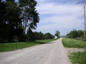 View to the North on the road to this Illinois home and property for sale
